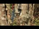 Опасные земли. Папуа Новая Гвинея. Сезон 1 серия 7