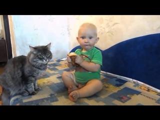 Кот и малыш делят булочку