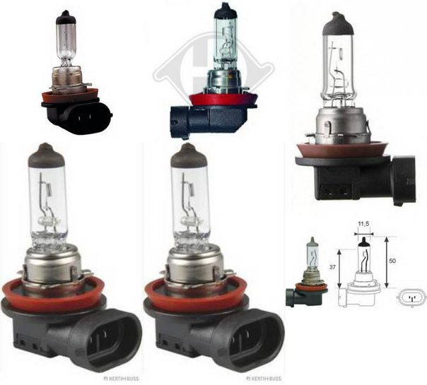 Лампа накаливания, фара дальнего света; Лампа накаливания, основная фара; Лампа накаливания, противотуманная фара для BMW X6 (F16, F86)