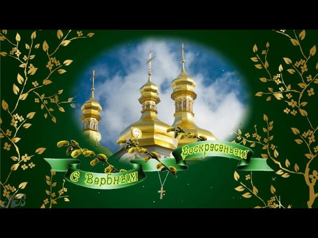 Поздравление с Вербным воскресеньем ❖ Красивая видео открытка