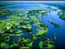 Дикая природа Миссисипи Дельта реки