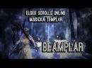 Magicka Templar Build PvE Beamplar by Alcast - Homestead ESO