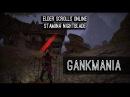 Stamina Nightblade Gankbuild Gankmania PvP - Homestead