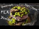 Оформление торта с улитками и ящерицей мох на торт шоколадные коряги и ветви