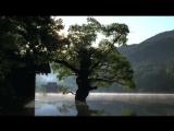 Весна, лето, осень, зима… и снова весна Фильм, 2003 (16+)