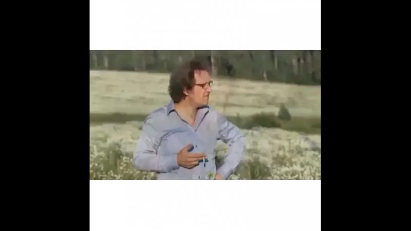 Снег идёт ❄️❄️С первым днём зимы ❄️❄️❄️