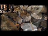 Fleshgod Apocalypse - The Violation - Darren Cesca, Fan Request