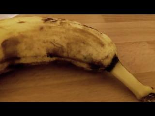Из банана вылезает паук