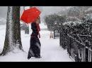 It's Snowing Fariborz Lachini