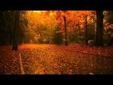 Самая Красивая Музыка о Нежности и Любви на Свете Расслабляющая Музыка Для Души, Релаксации и Сна