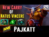 Pajkatt New NaVi Carry Dota 2