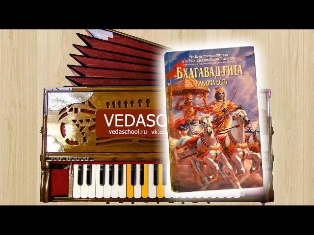 VEDASCHOOL KIRTAN №5 Hare Krishna Maha Mantra Srila Prabhupada Харе Кришна Киртан Маха Мантра