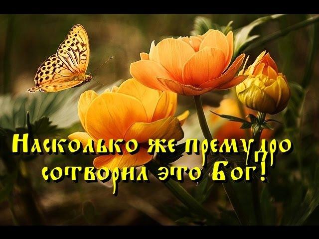 О вере в Бога и доверии Ему - Всё должно возводить нас к Богу (Прп. Паисий Святогор...