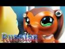 Littlest Pet Shop Popular Episode 12 Взлет и Падение Брук Хейс RUS Русская озвучка