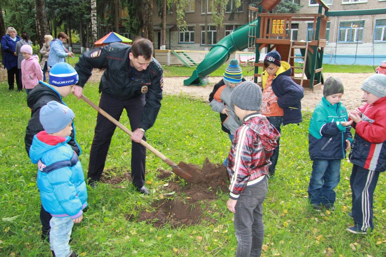 это приняли участие в акции посади дерево обоев