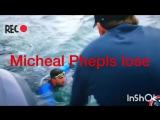 Майкл Фелпс проиграл белой акуле в заплыве на 100 метров  Раунд 1