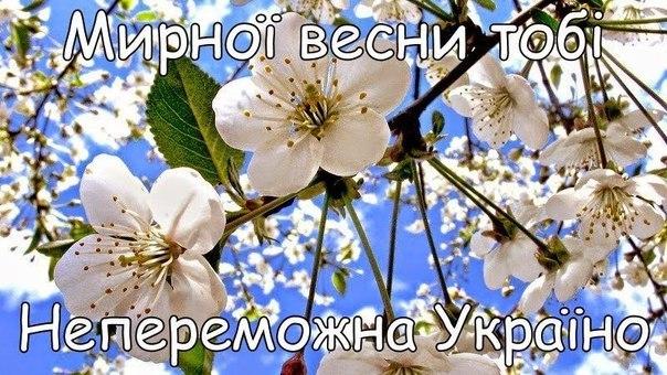"""Житель Чопа вырастил """"плантацию"""" конопли на 1 млн грн - Цензор.НЕТ 463"""