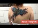 Живая татуировка