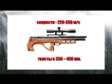 Что такое твист ствола пневматической винтовки (Урок 4).mp3