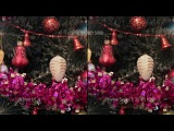 Сравнительный тест объективов Vivitar Series 1 35-85 f2.8 и Canon EF 50mm f1.4