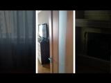 Аренда 1-к.кварт. ул.Булаховского 5Б. г.Киев, метро Академгородок