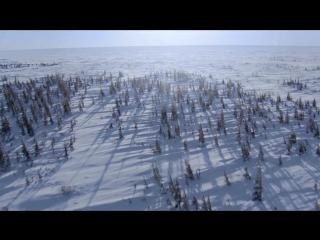 BBC: Планета Земля (7) Великие равнины / Planet Earth (2006) HD (720p)