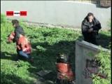 Бомжи массово изнасиловали даму и забили камнями (новости).