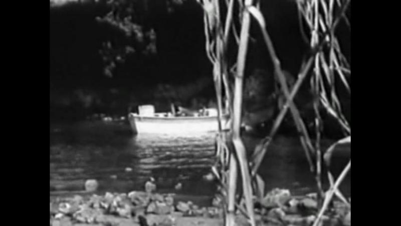 Ужас Паучьего Острова - Horrors of Spider Island (1960)