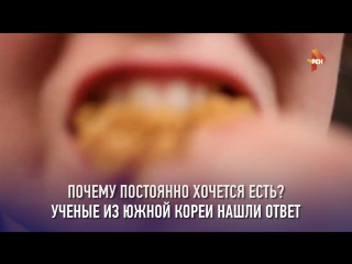О еде и чувстве голода