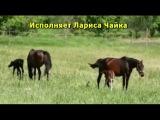 УПОЕНИЕ СКАЧКОЙ Лариса Чайка   YouTube