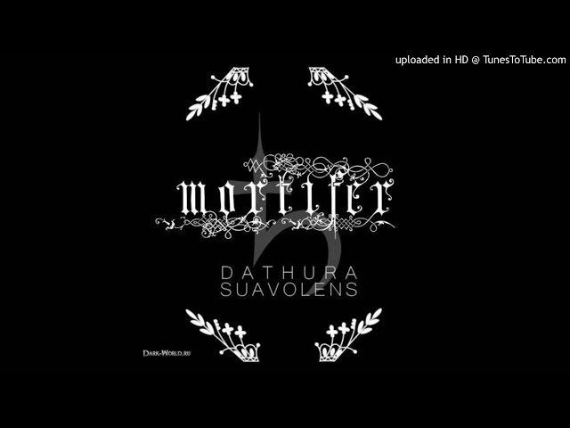 Dathura Suavolens - Lilith Rebelatvs