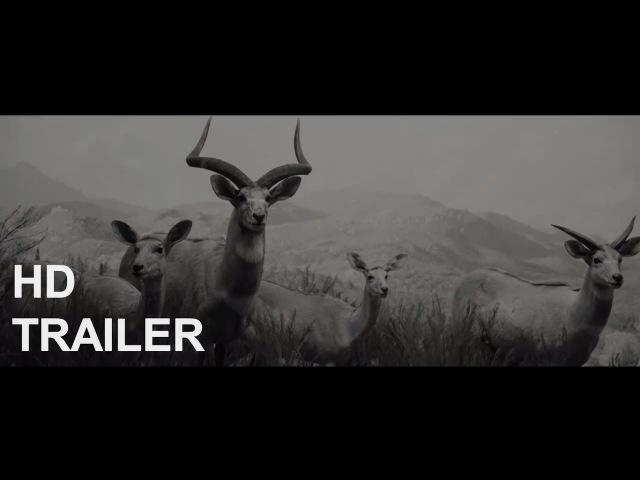 Wonderstruck – Trailer 2017