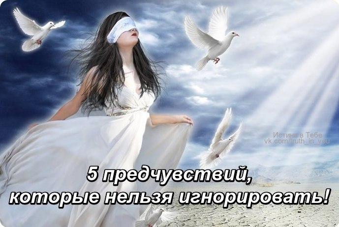 https://pp.userapi.com/c637926/v637926562/47ee0/etD-KSVJJ-k.jpg