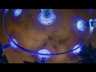 Ночной город-государство Сингапур в 4К
