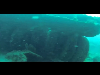 Невероятные открытия тихого океана