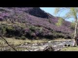 Майское путешествие автодома на Алтай