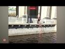 В Петербурге мужчина нырнул в канал Грибоедова, чтобы спасти мобильный телефон