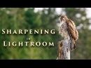 Sharpening in Lightroom Tutorial