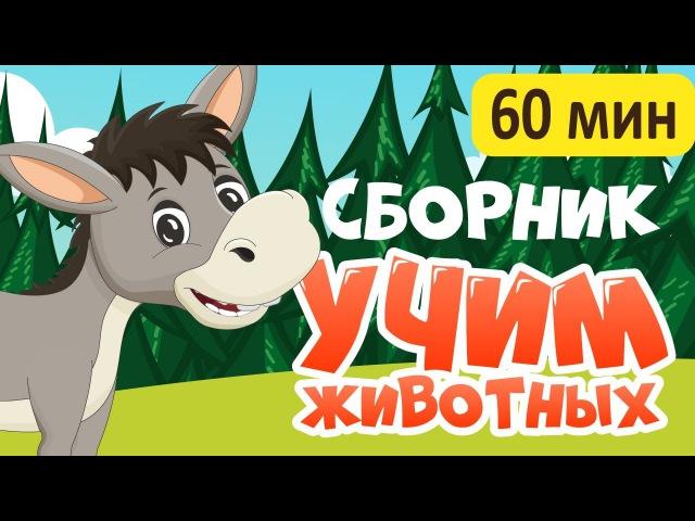 СБОРНИК! УЧИМ ЖИВОТНЫХ для самых маленьких - развивающие мультфильмы для малышей