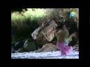 Драка Лукаса и Лео на пляже.Сериал клон 239 серия