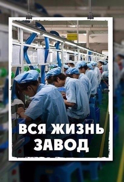Вся жизнь - Завод (2011)
