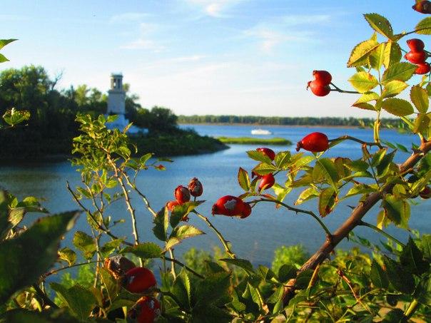 Ну всё, я отпраздновал новый год. Где там ваше лето?))  #волгоград #вл