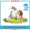 Приют для бездомных животных г. Новосибирск