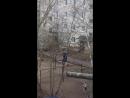 Спасение Василька