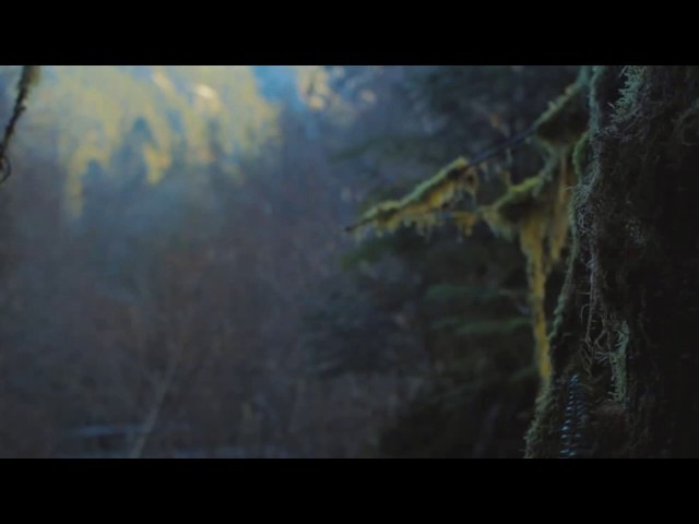 Олег Винник - Мати каже правду