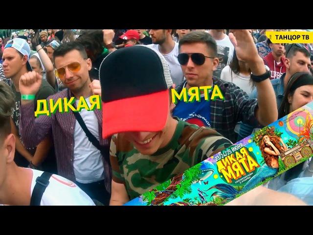 Мы на фестивале Дикая Мята