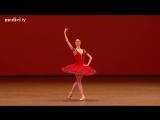 Svetlana Zakharova, Denis Rodkin - Don Quixote - Grand pas