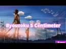 |AMV| Byousoku 5 Centimeter