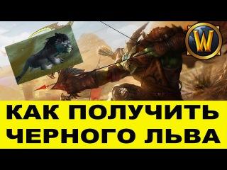 World of Warcraft Как получить черного льва