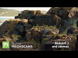 Megascans for VFX with Redshift and 3dsmax